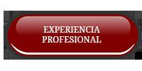 experiencia_profesional070916